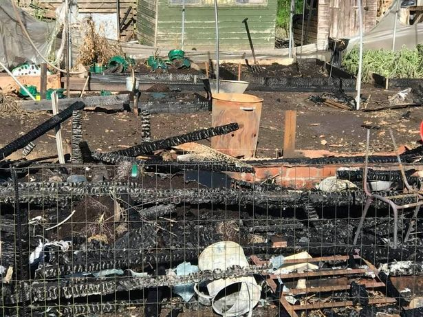 Several plots have been devastated by the blaze on Tuesday